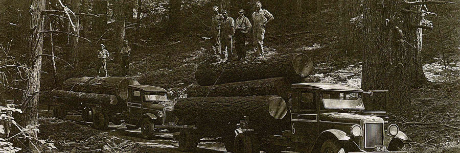 TIMBER SUPPLY COMPANY, INC.